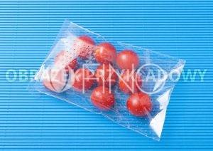 fino sample 03 300x212